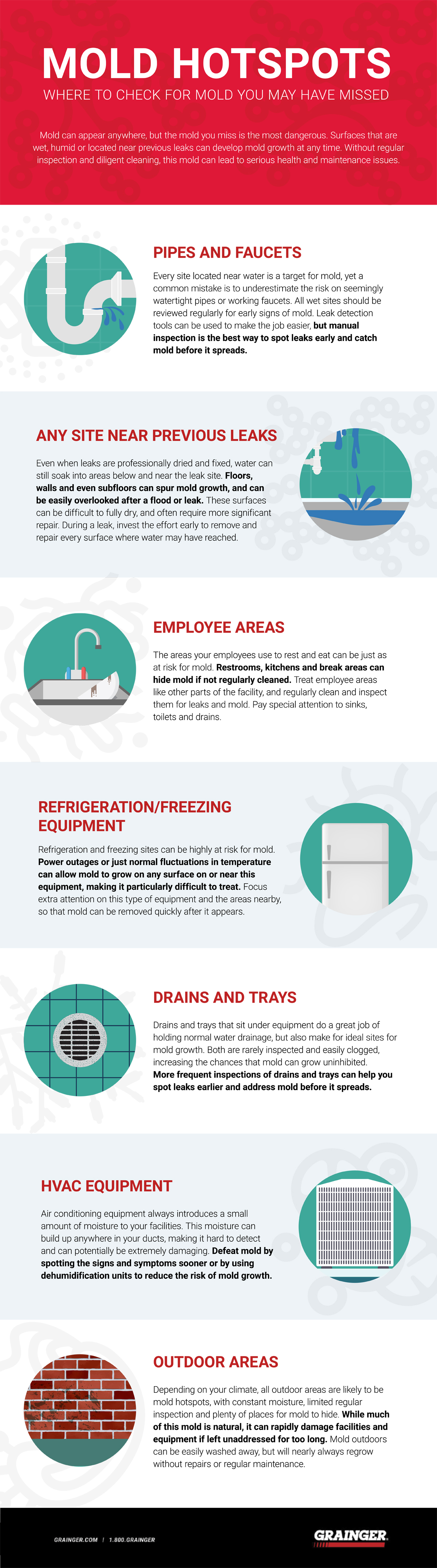 Mold Spot Grainger Infographic